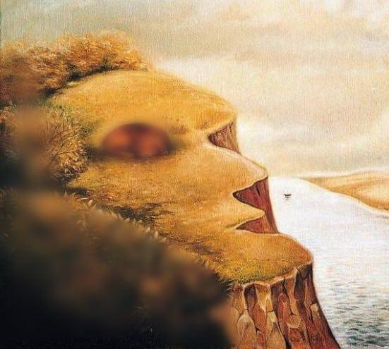 RETO VISUAL: Si viste un rostro humano