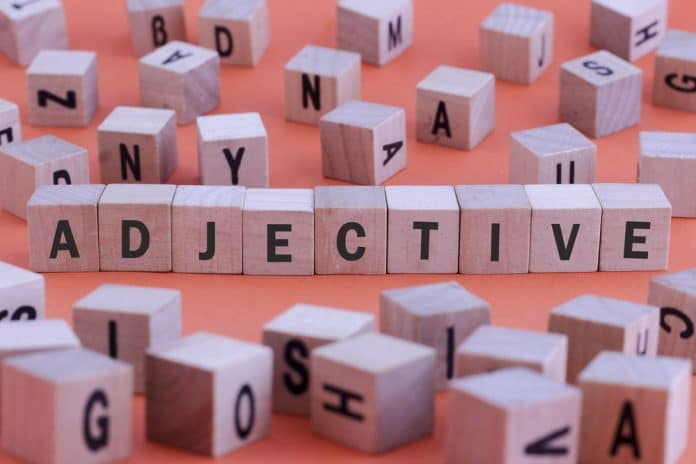 5 palabras que mejor te describen