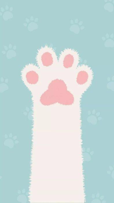 Fondos de pantalla de gatitos 9