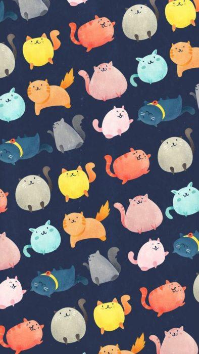 Fondos de pantalla de gatitos 10
