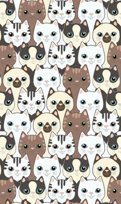 Fondos de pantalla de gatitos 6