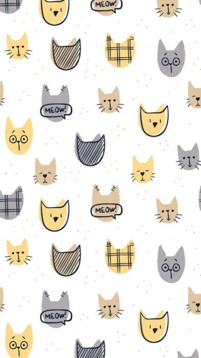 Fondos de pantalla de gatitos 5