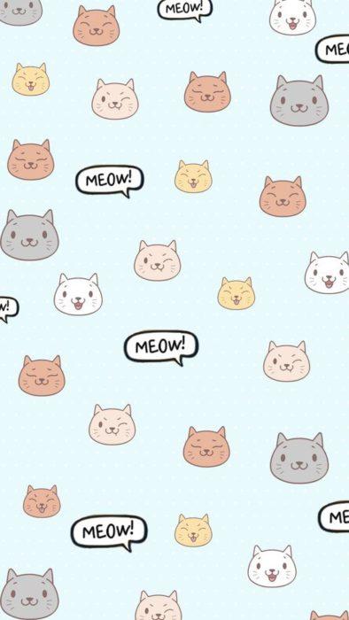 Fondos de pantalla de gatitos 2