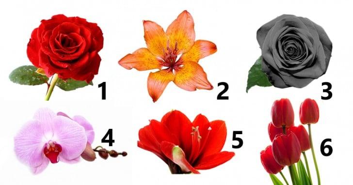 Elige la flor
